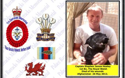 Captain Stephen James Healey killed in Afghanistan 26th May 2012