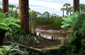 Figure 1 - Reconstruction of a Carboniferous coal swamp with stands of Lepidodendron and Calamites on a lake margin (John Watson (C) The Open University).