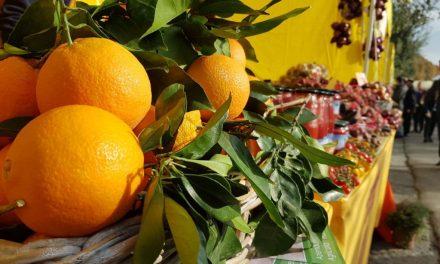 Agrumi, contro la crisi del comparto al via il progetto di filiera con la Lome Super Fruit di Masseria Fruttirossi di Castellaneta, per succhi 100% di arance e clementine