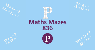 Maths Mazes Banner - with simple maths problems alongside