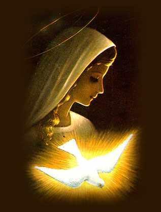 Terço de Amor por Maria