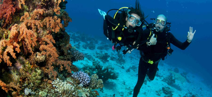 PADI Divemaster Course - Fun Dive