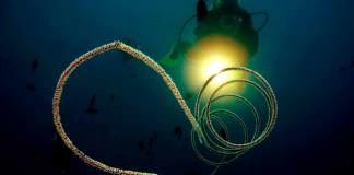night diving el nido