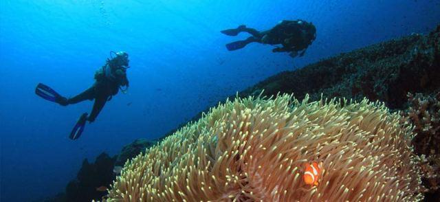 scuba-diving-course-el-nido