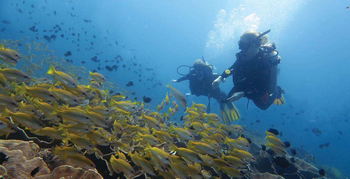 fun-diving-el-nido-philippines-1