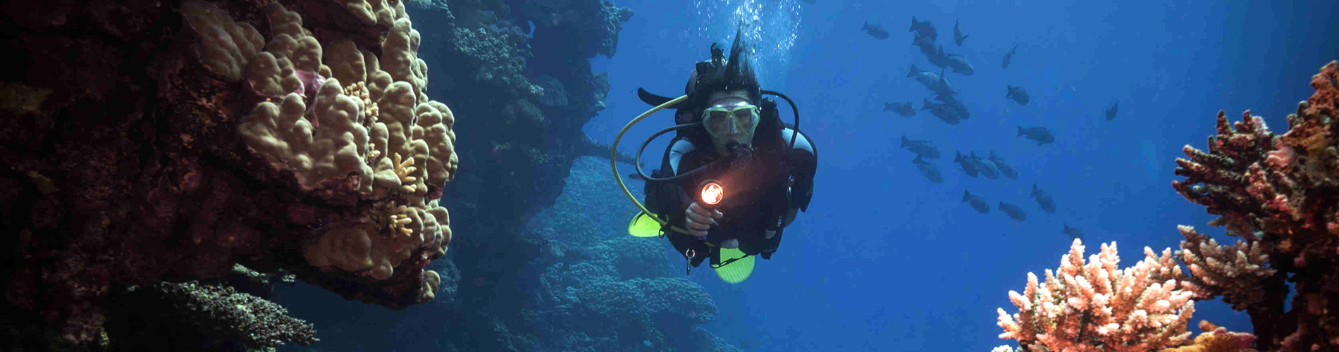 palawan divers advanced course