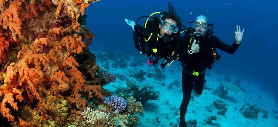 PADI Referral Open Water Course - Fun Dive