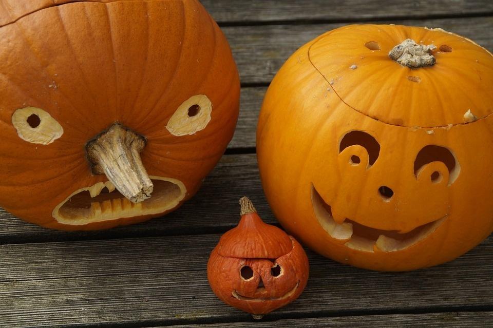 Zucca Halloween Cartapesta.Come Intagliare La Zucca Di Halloween Ecco Il Tutorial Palcoscenico