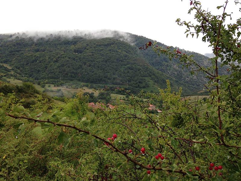 Camino Lebaniego Valle de Pineda Potes y Cervera de Pisuerga