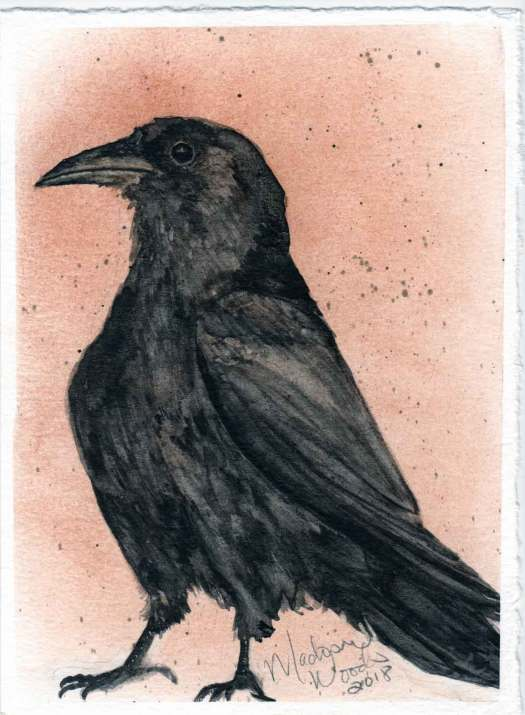 """Kady's Crow"". 5 x 7, original not for sale. Prints and stickers are available."