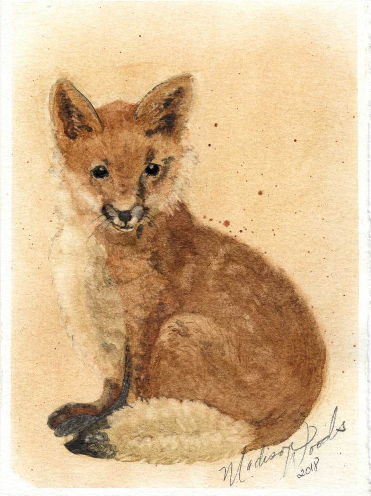 """Fox No. 1. Actual size 5.5 x 7.5"""". All colors, earth pigments, local to Wild Ozark. Original not for sale. Prints, stickers, note cards available."""