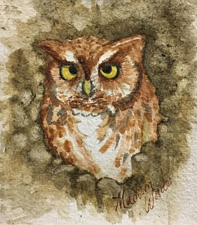 A screech owl in the earth tone colors of Ozark pigments.