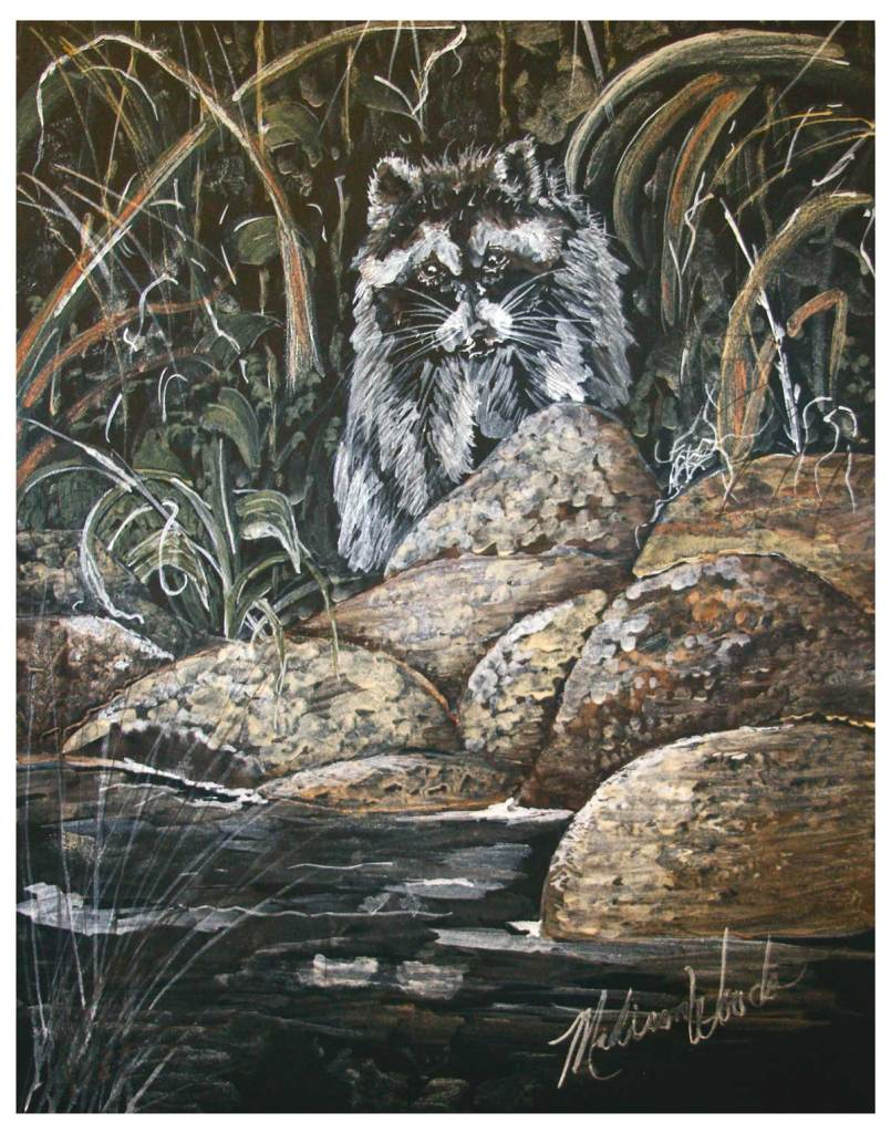 Raccoon on the Rocks, by Madison Woods. All light-fast Ozark pigments.