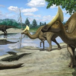 Russian Late Mesozoic | Resources @ Cretaceous.ru