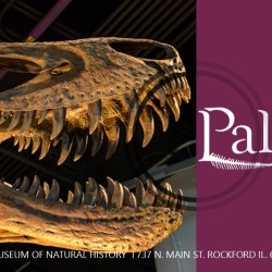 PALEOFEST 2017 begins today! Are you coming?