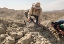 On the News   Q&A: Female paleontologists protest gender stereotypes—with beards @ Science