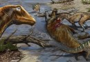 On the News | Dinosaur discovery: a cavalcade of new giant dinosaurs is unearthed @ The Guardian