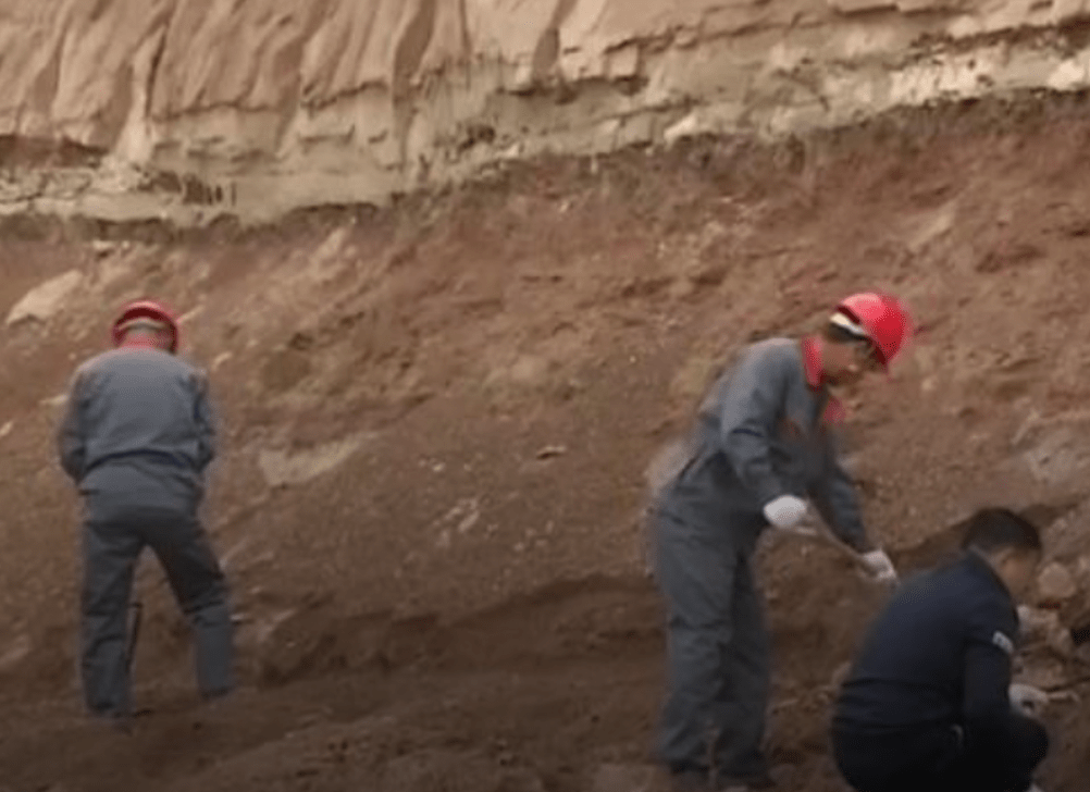 On the News   China   Chinese scientists start excavating