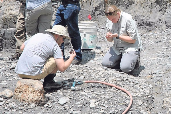 On the News | USA | Paleontologists converge on Saltville @ SWVA Today