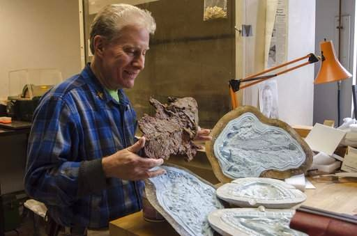 On the News | USA | Philadelphia museum's fossil surgeon reveals ancient past @ New Jersey Herald