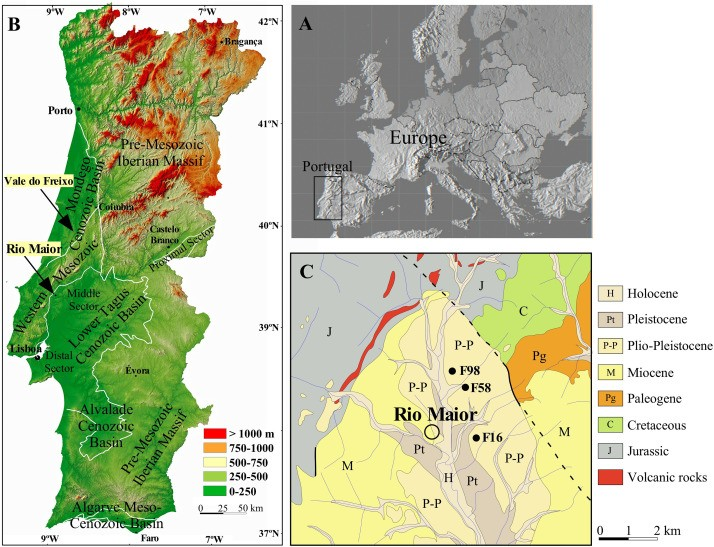 Just out | The late Pliocene palaeoenvironments and palaeoclimates of the western Iberian Atlantic margin from the Rio Maior flora @Palaeogeography, Palaeoclimatology, Palaeoecology