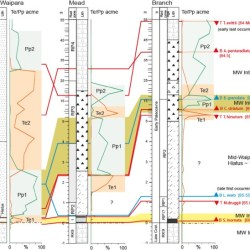 Just out | South Pacific evidence for the long-term climate impact of the Cretaceous/Paleogene boundary event @Earth-Science Reviews