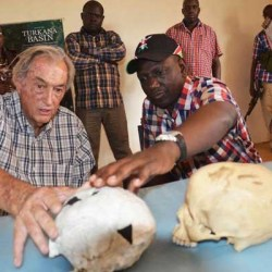 On the News | South Africa | Africa's rich fossil finds should get the air time they deserve @ Daily Nation