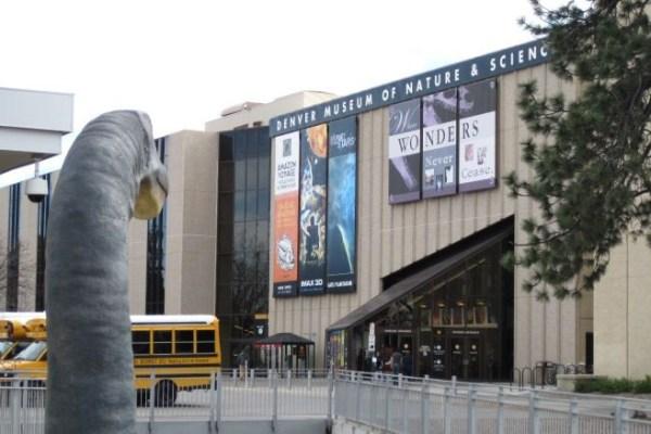 Job | Denver Museum of Nature & Science | Paleontology Preparator