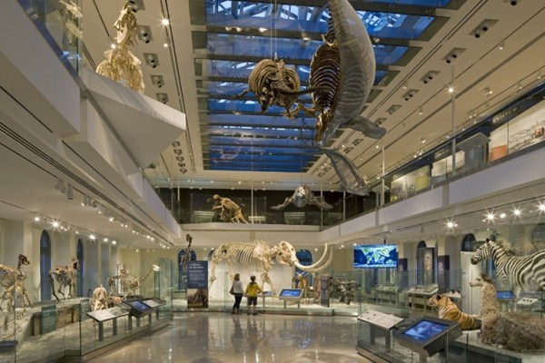 Job | Natural History Museum of Los Angeles | Curator, Ichthyology Department
