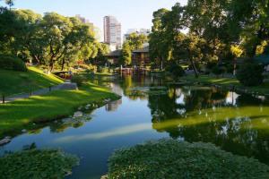 jardin-japones-106