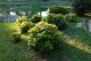 jardin-japones-126