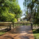 Lago Alligator visto hacia la entrada