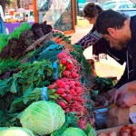Mercados Sabe la Tierra -mayo de 2019- cada vez en más barrios