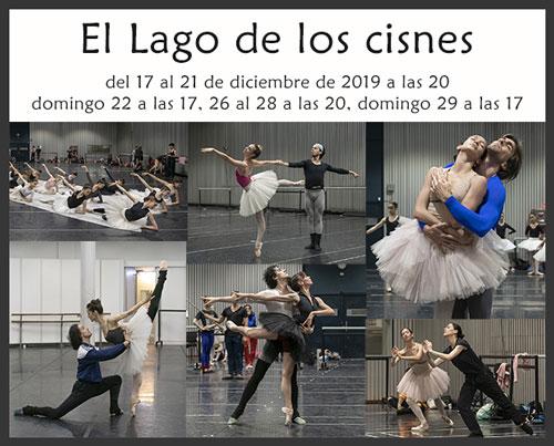 """""""El Lago de los cisnes"""" en el Teatro Colón cierra la temporada de Ballet"""