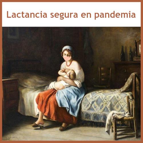 Cómo asegurar lactancia segura en pandemia