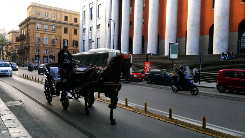 carrozza1