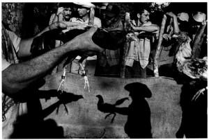 Ernesto Bazan Cock-fighting arena, Remedios,1995