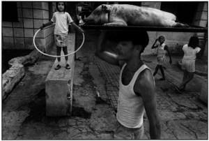 Ernesto Bazan NewYearRoastedpiglet, Havana, 1994
