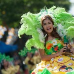 Carabao Festival 2015