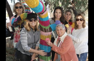 Yarn Bombing Highlights Woman's History Month