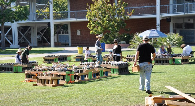 Fireworks shells are stacked on the PaliHi quad during the day on July 4. Photo: Shelby Pascoe