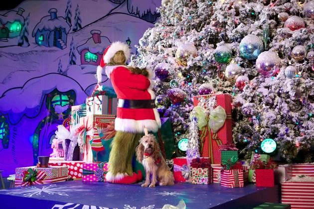 """The Grinch and Max at """"Grinchmas"""" at Universal Studios Hollywood"""