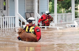Members of the FEMA's California Urban Search and Rescue Task Force helped residents in Houston. Photo: Tom Kitahata