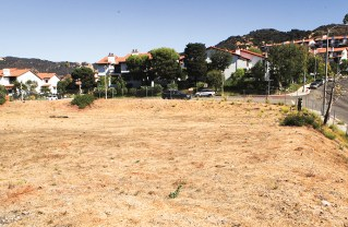 Site of proposed development in the Highlands. Photo: Bart Bartholomew