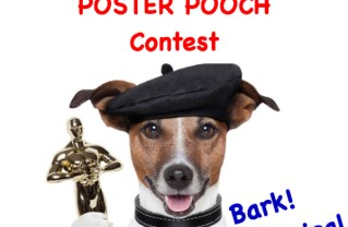 Theatre Palisades Pooch Contest: Dogs, Canines Photos Needed