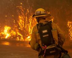 A firefighter combats the the Woolsey Fire. Photo: LACOFD.