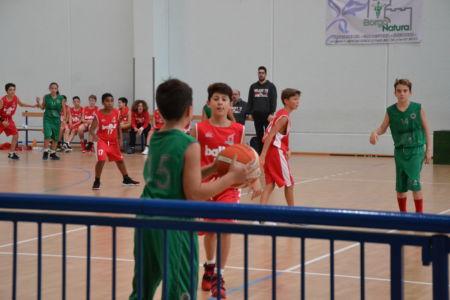 Pallacanestro San Giorgio Benedetto 21 Ottobre 2018 (306)