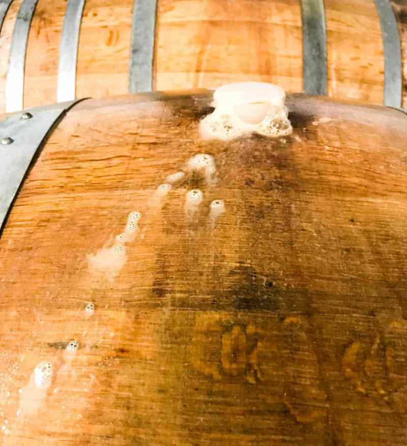 Sparkling Wine Fermentation