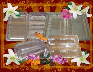 "Clear ""Bento"" Containers"
