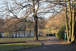 43-grovelands_park_N21_winchmore_hill_london-autumn-view